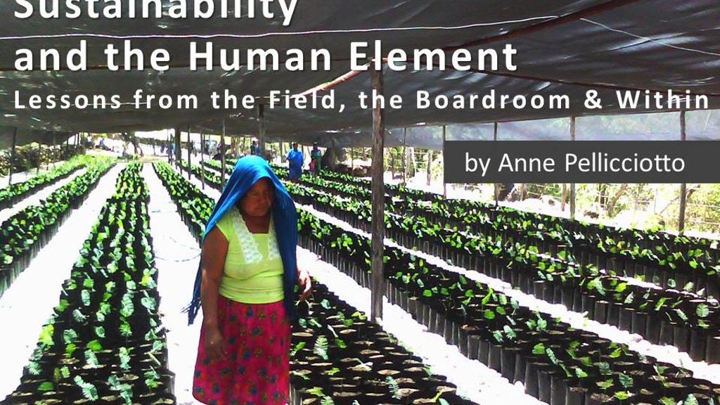 A Story of Sustainability from South of the Border project video thumbnail