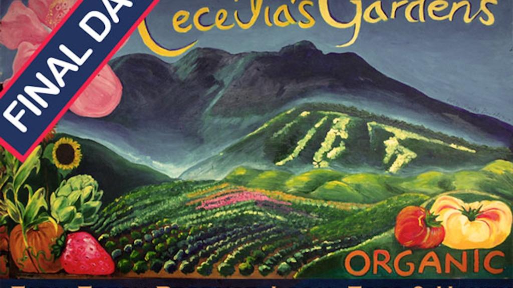 Ceceilia's Gardens: Organic Uncommon Pickles Preserves & Jam project video thumbnail