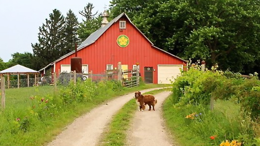 Squash Blossom Farm Kitchen project video thumbnail