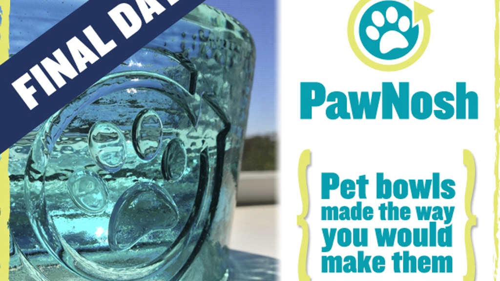 PawNosh Pet Bowls project video thumbnail