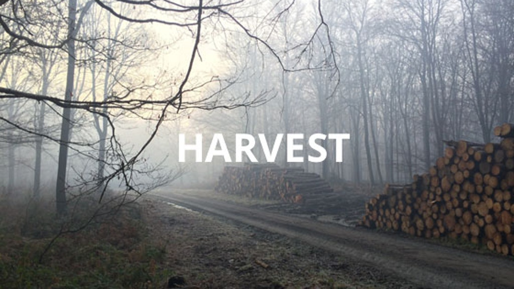 Harvest project video thumbnail