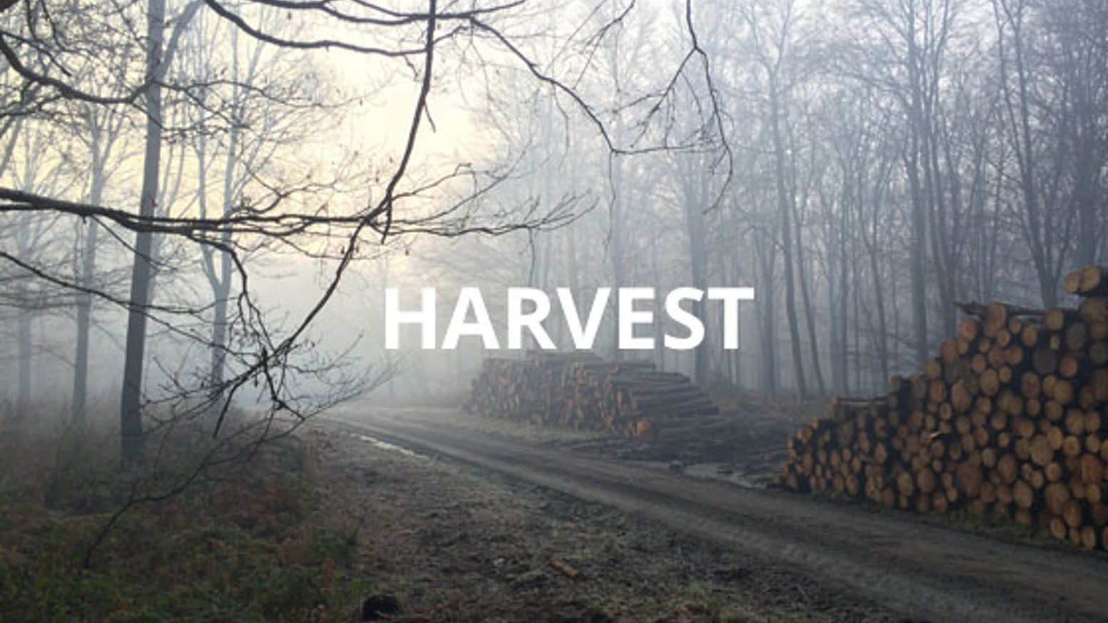 "Harvest is a short horror film idea about three friends on the road to a party they will never reach. ""Youth is wasted on the young."""