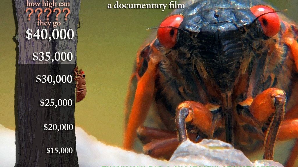 Return of the Cicadas project video thumbnail