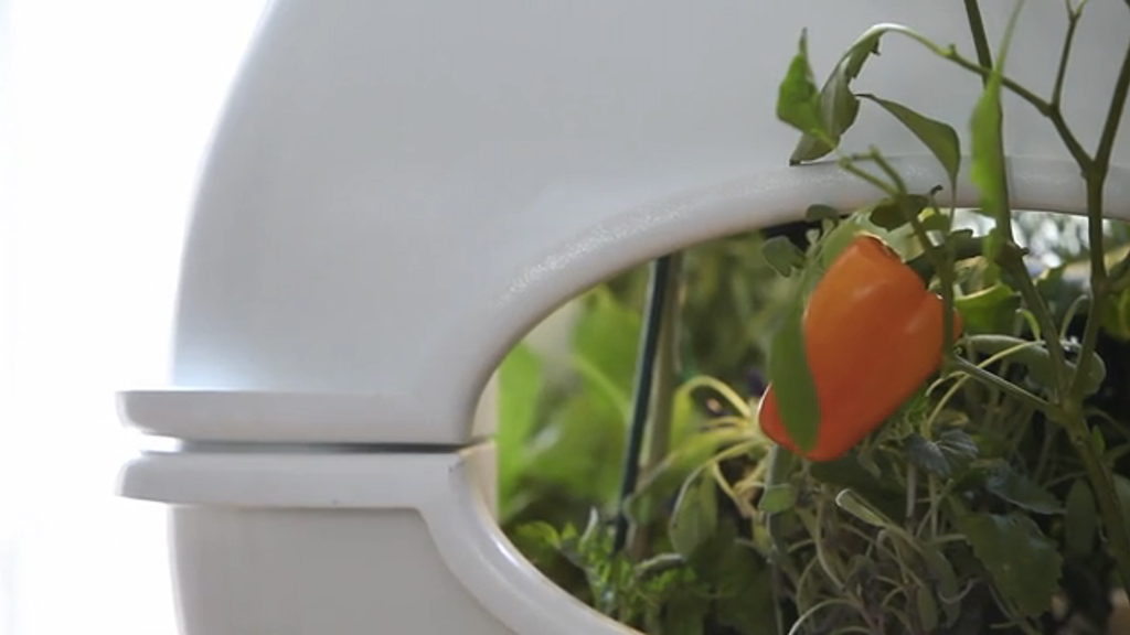 The Aqualibrium Garden - The Future of Food project video thumbnail