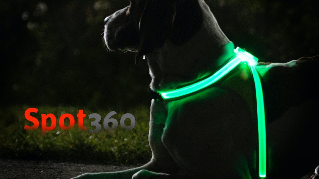 Spot360 | Illuminated, Reflective, & Fluorescent Dog Vest project video thumbnail