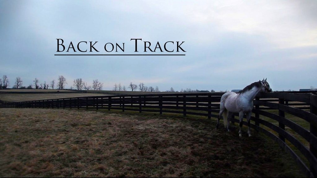 Back on Track project video thumbnail