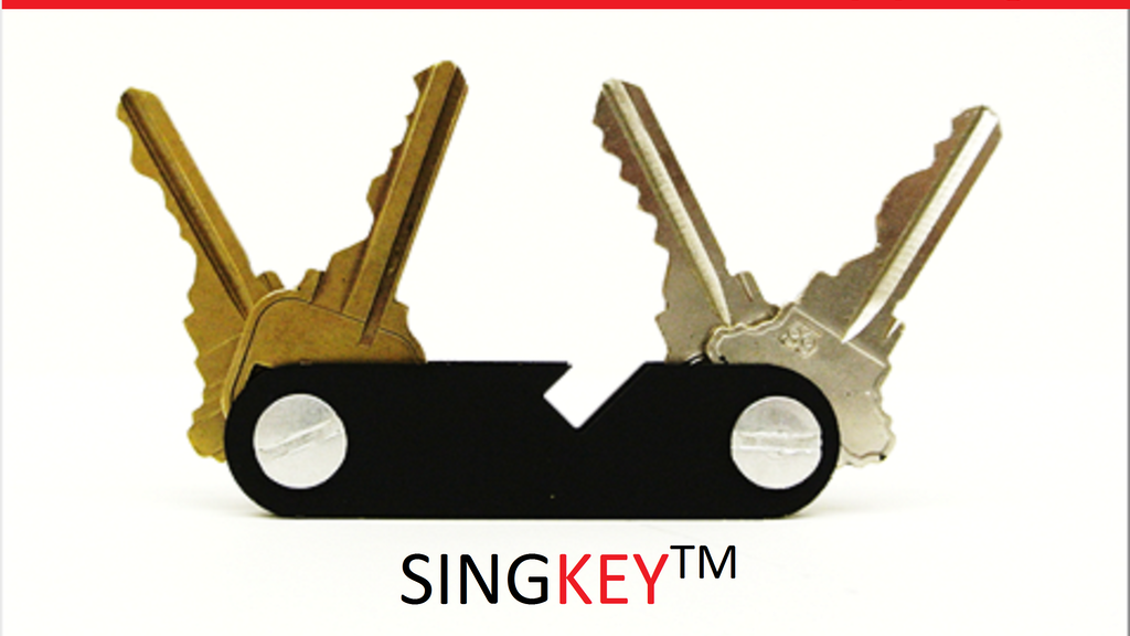 SingKey: Organize your keys and enjoy your refreshments project video thumbnail