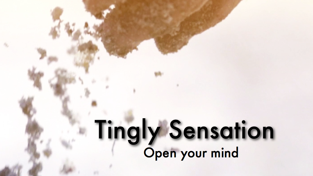 TINGLY SENSATION: The ASMR Story project video thumbnail