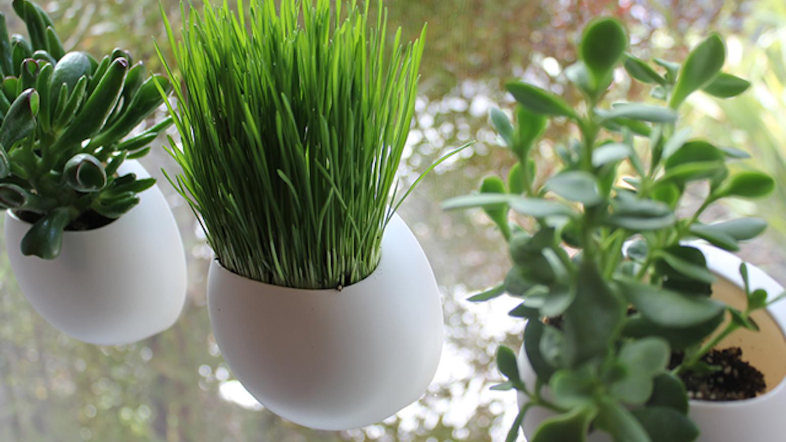 Window pods the perfect indoor garden by ben shope kickstarter tiny gardens that attach to your window workwithnaturefo