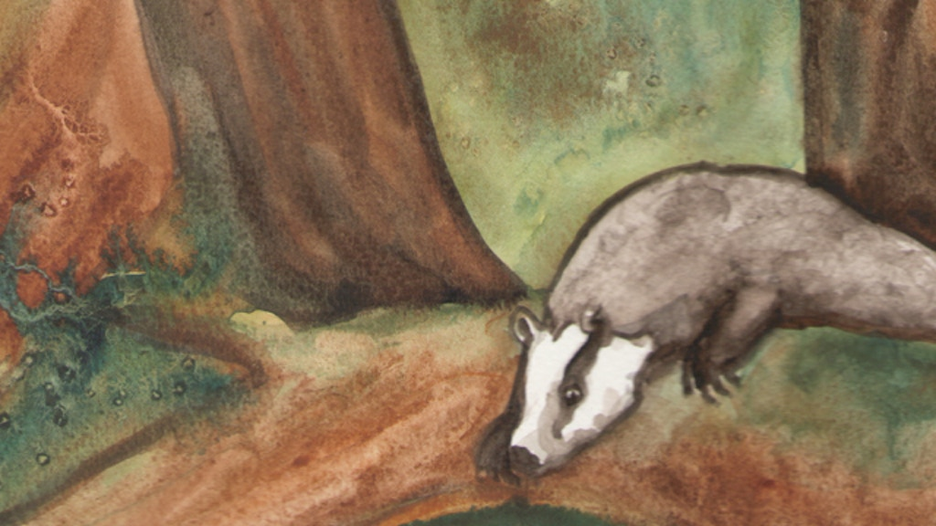 The Badgers Forest Tarot project video thumbnail