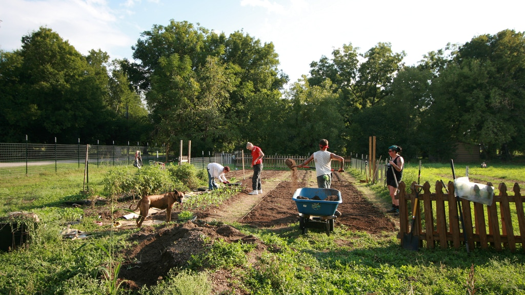 Whirlaway Farm, an Adventure in Homesteading project video thumbnail