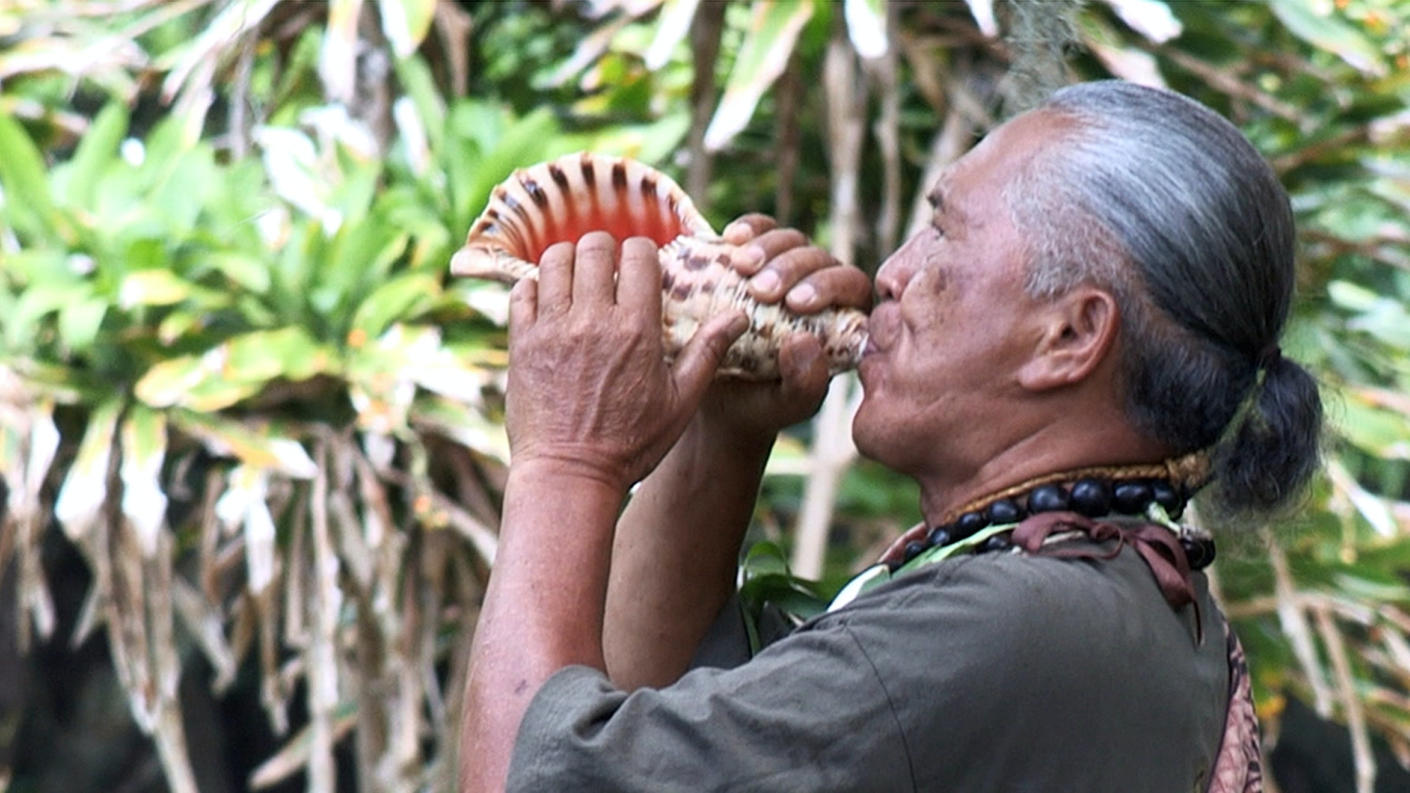 One of the last Hawaiians born and raised in Molokai's treasured Hālawa Valley, Pilipo must pass along the legacy of his ancestors.