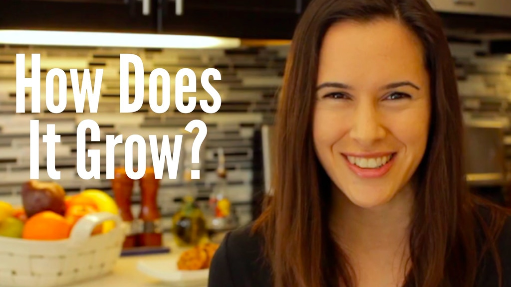 """""""How Does it Grow?"""" Video Series project video thumbnail"""
