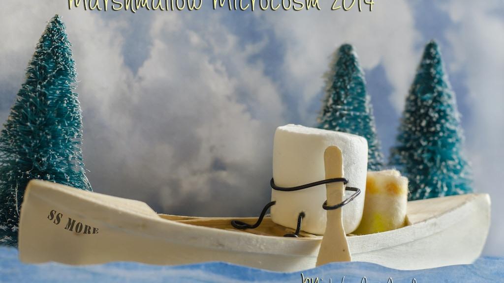 Marshmallow Microcosm 2014 project video thumbnail