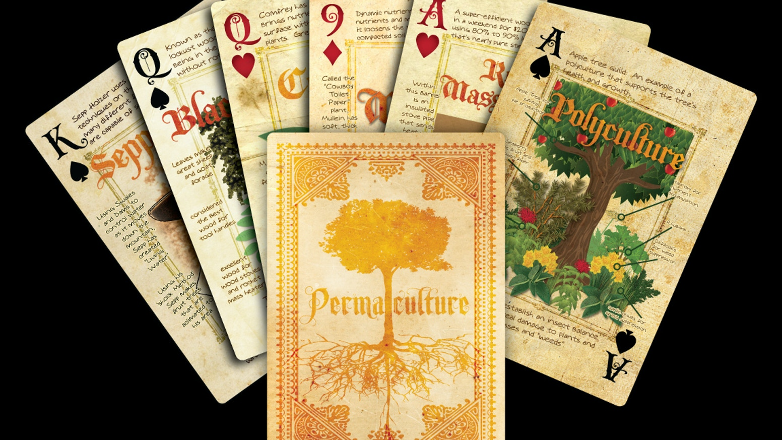 54 cards, each packed with permaculture information.  People, plants, ideas, animals, techniques ...