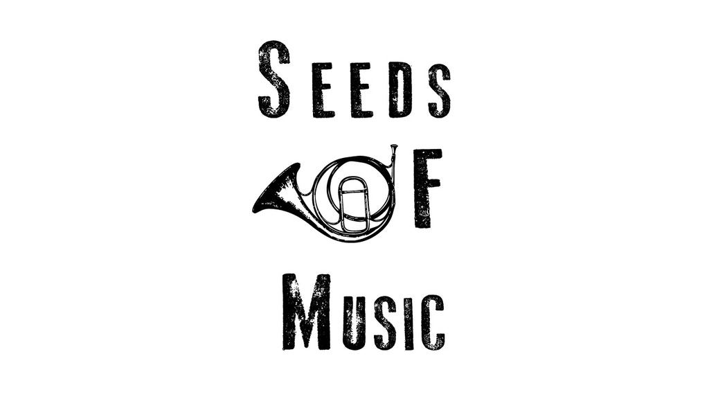 Seeds of Music Podcast: Rise Above the Noise project video thumbnail