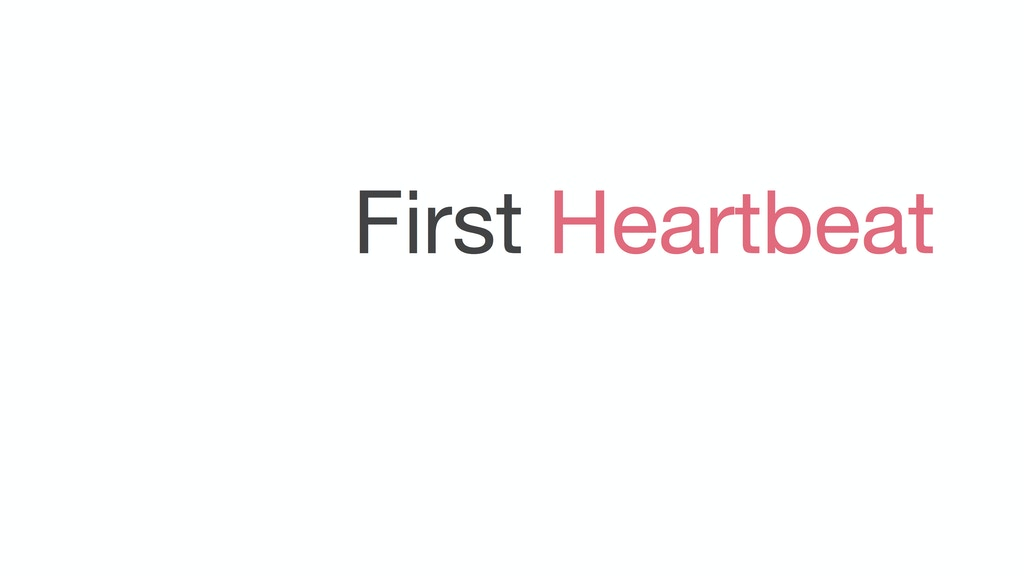 First Heartbeat: A Film About Miscarriage project video thumbnail