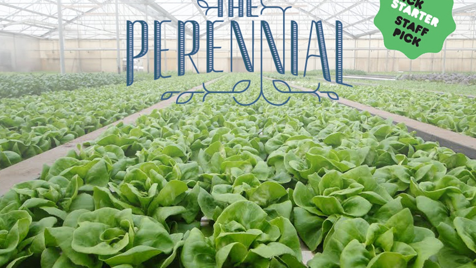 How sustainable can a restaurant be? We plan to find out at The Perennial, a new restaurant from a founder of Mission Chinese Food.