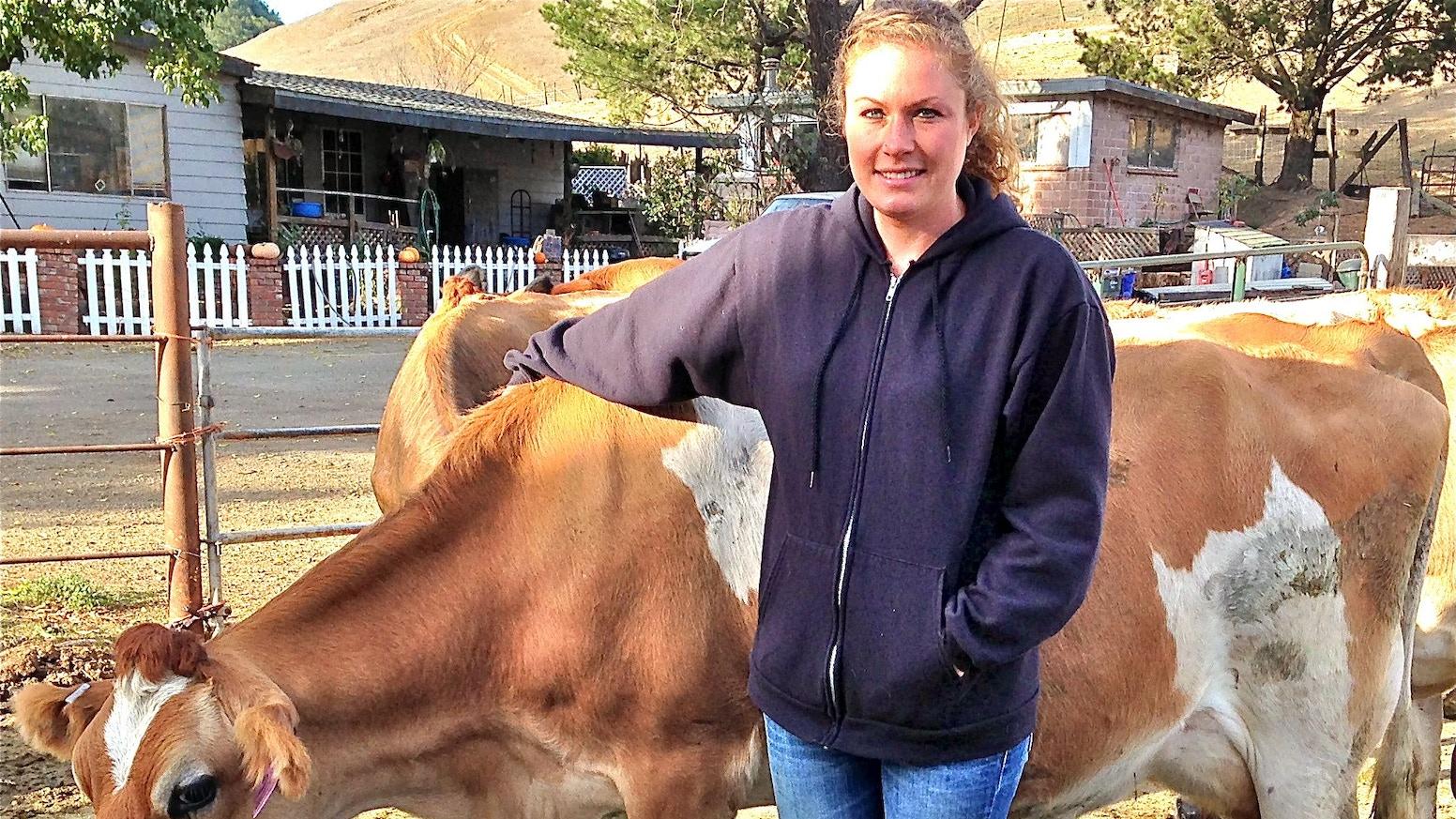Boutique Cow Dairy by Marissa Thornton — Kickstarter