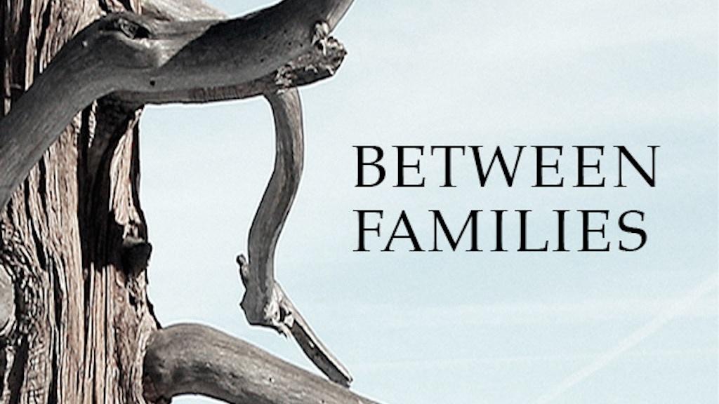 Between Families- A Novel project video thumbnail