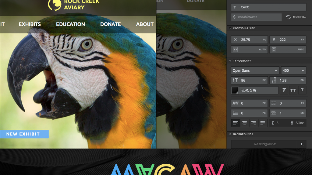 Macaw: The Code-Savvy Web Design Tool project video thumbnail