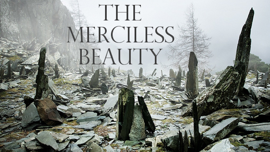 Project image for The Merciless Beauty