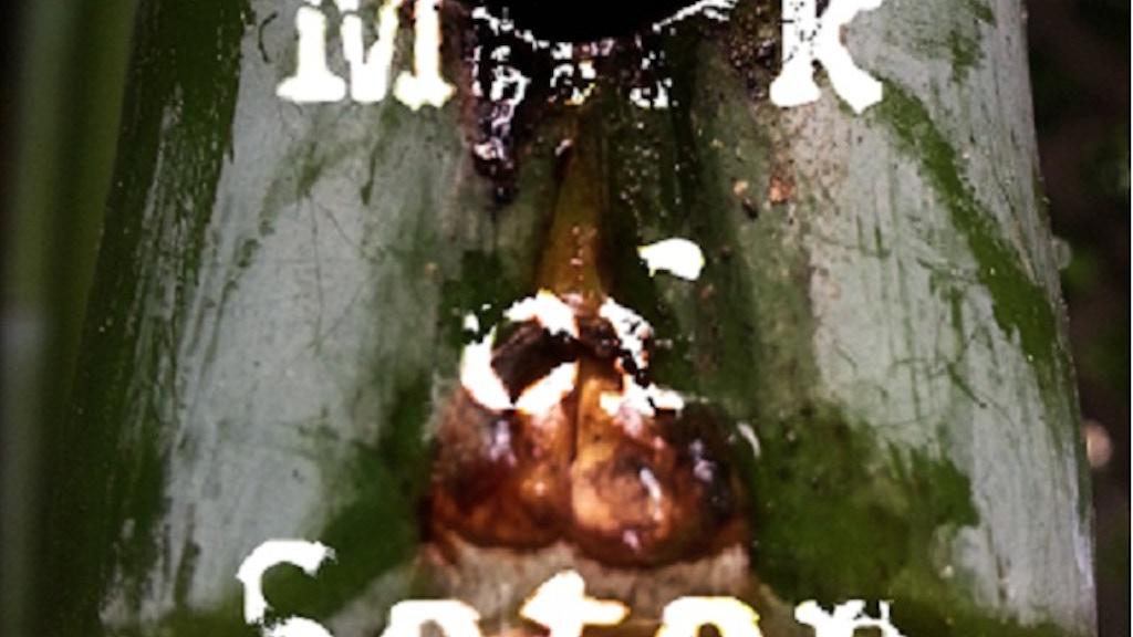 Mark of Satan project video thumbnail