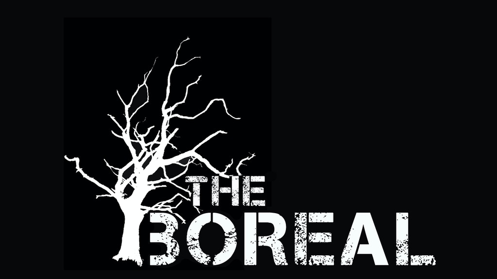 The Boreal: An All-Ages DIY Music Venue & Community Space project video thumbnail