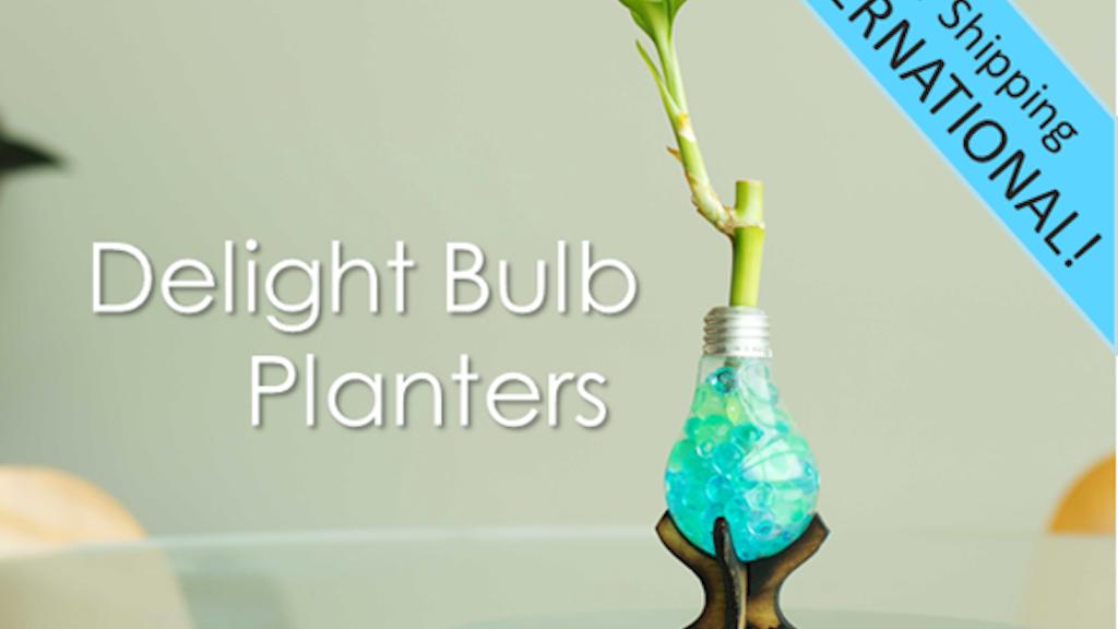 Delight Bulbs: Original Light Bulb Planters project video thumbnail
