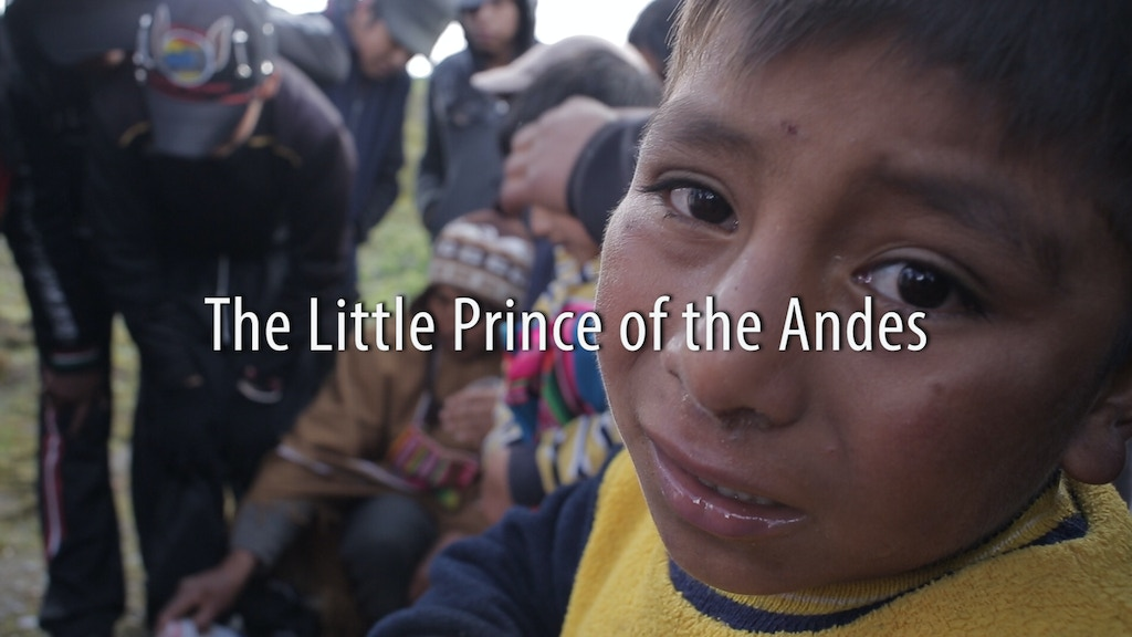 The Little Prince of the Andes project video thumbnail