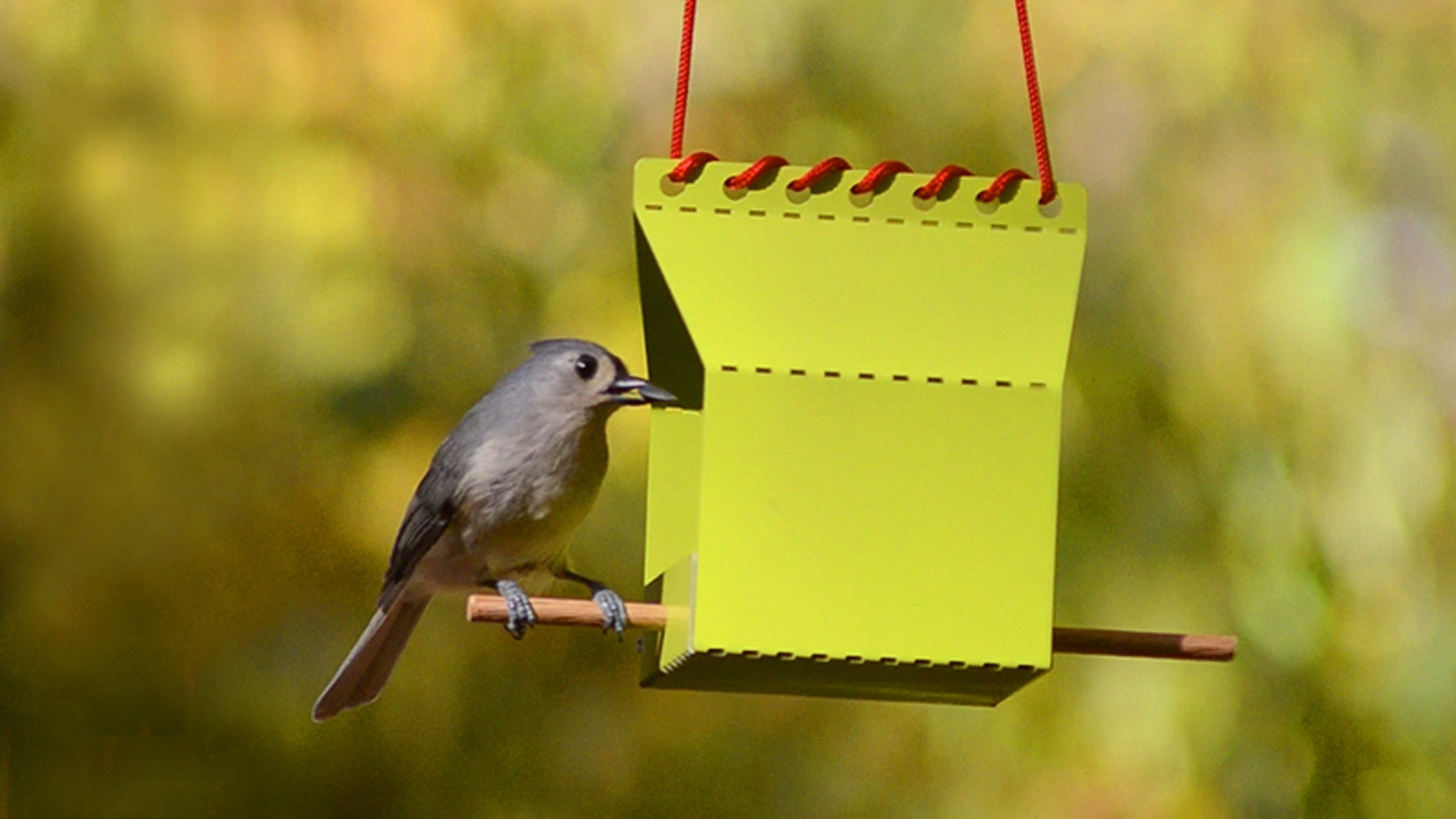 Ships flat, folds in minutes - a fun, fold-it-yourself aluminum feeder for your feathered friends!