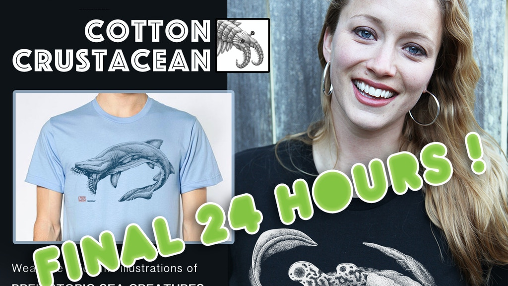 Prehistoric marine life fossilized on soft US made tees. project video thumbnail