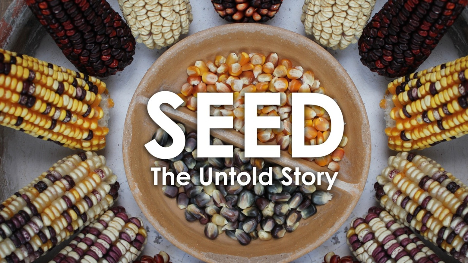 An inspiring documentary that unearths the powerful story of seeds. From the creators of QUEEN OF THE SUN and THE REAL DIRT ON FARMER JOHN.