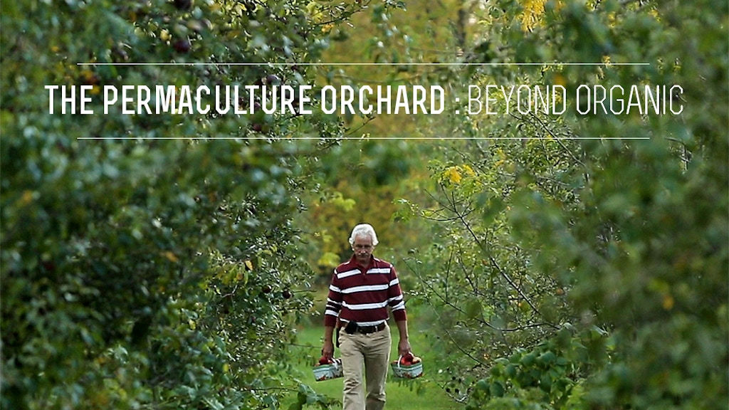 The Permaculture Orchard : Beyond Organic project video thumbnail