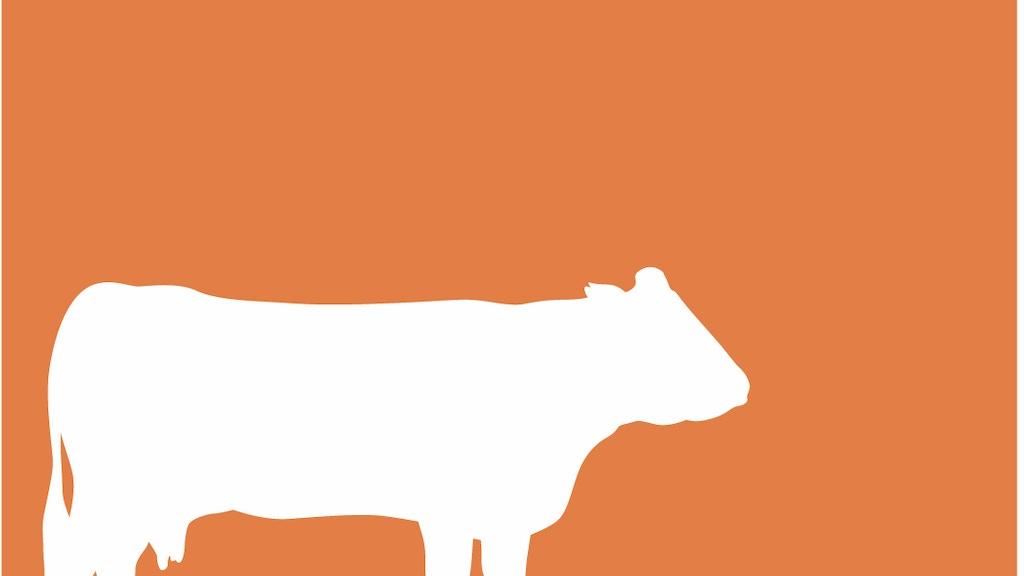 Monty's Beef Co - 100% Pure Piedmontese™ Burger Patties project video thumbnail