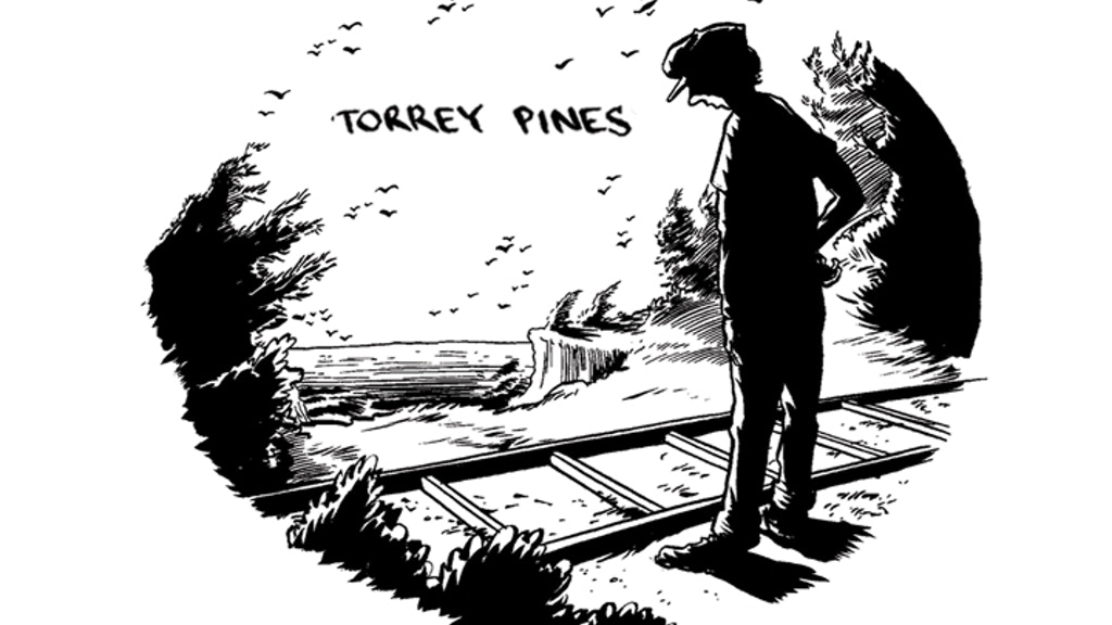 Torrey Pines: An animated film about Schizophrenia project video thumbnail