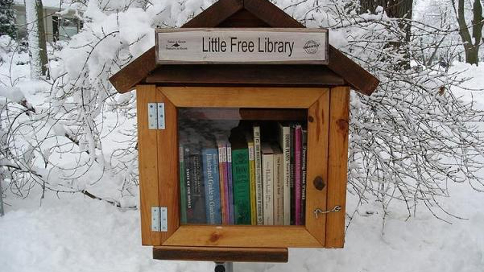 Image result for free little library