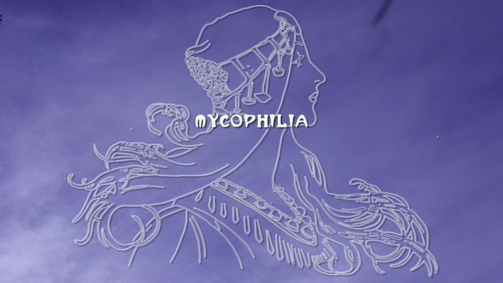 Mycophilia - a short documentary project video thumbnail