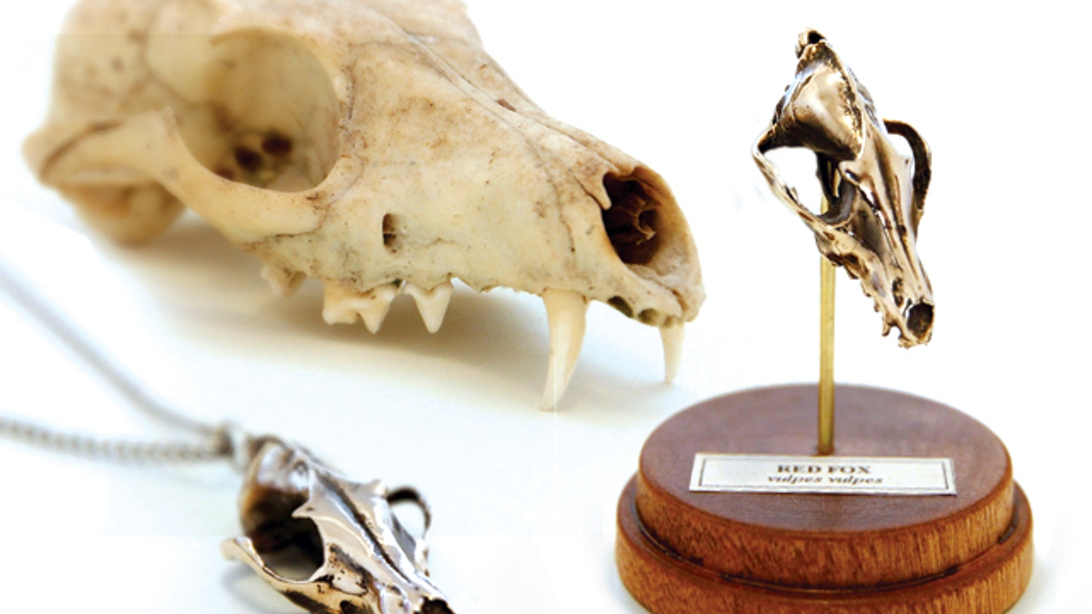 Miniature animal skull replicas, reproduced in high detail using 3D scanning, 3D printing, and traditional lost wax casting.