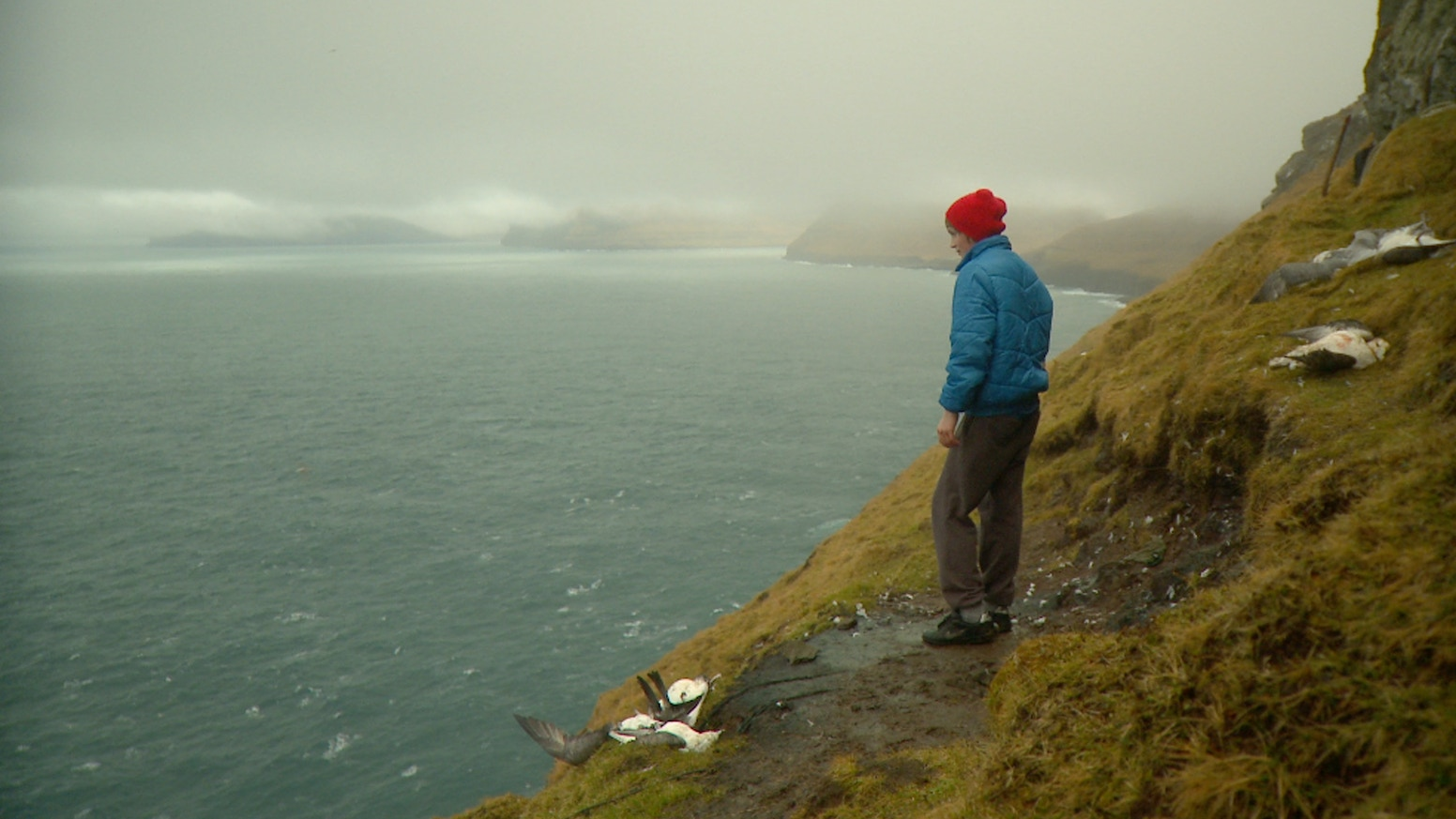 Sundance supported documentary tells the epic story of the Faroe Islands and the marine pollution that affects us all.