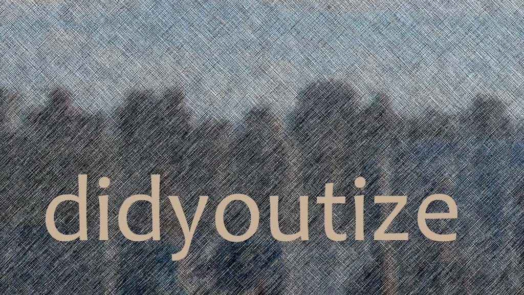 Project image for didyoutize