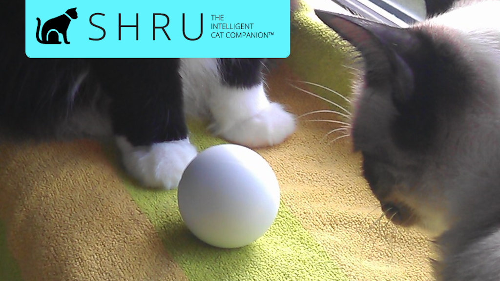 SHRU - The intelligent cat companion project video thumbnail