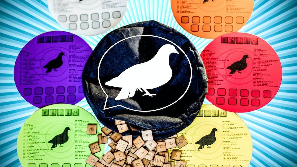 Pijin: Flock, talk & unlock the sensory puzzles of speech project video thumbnail