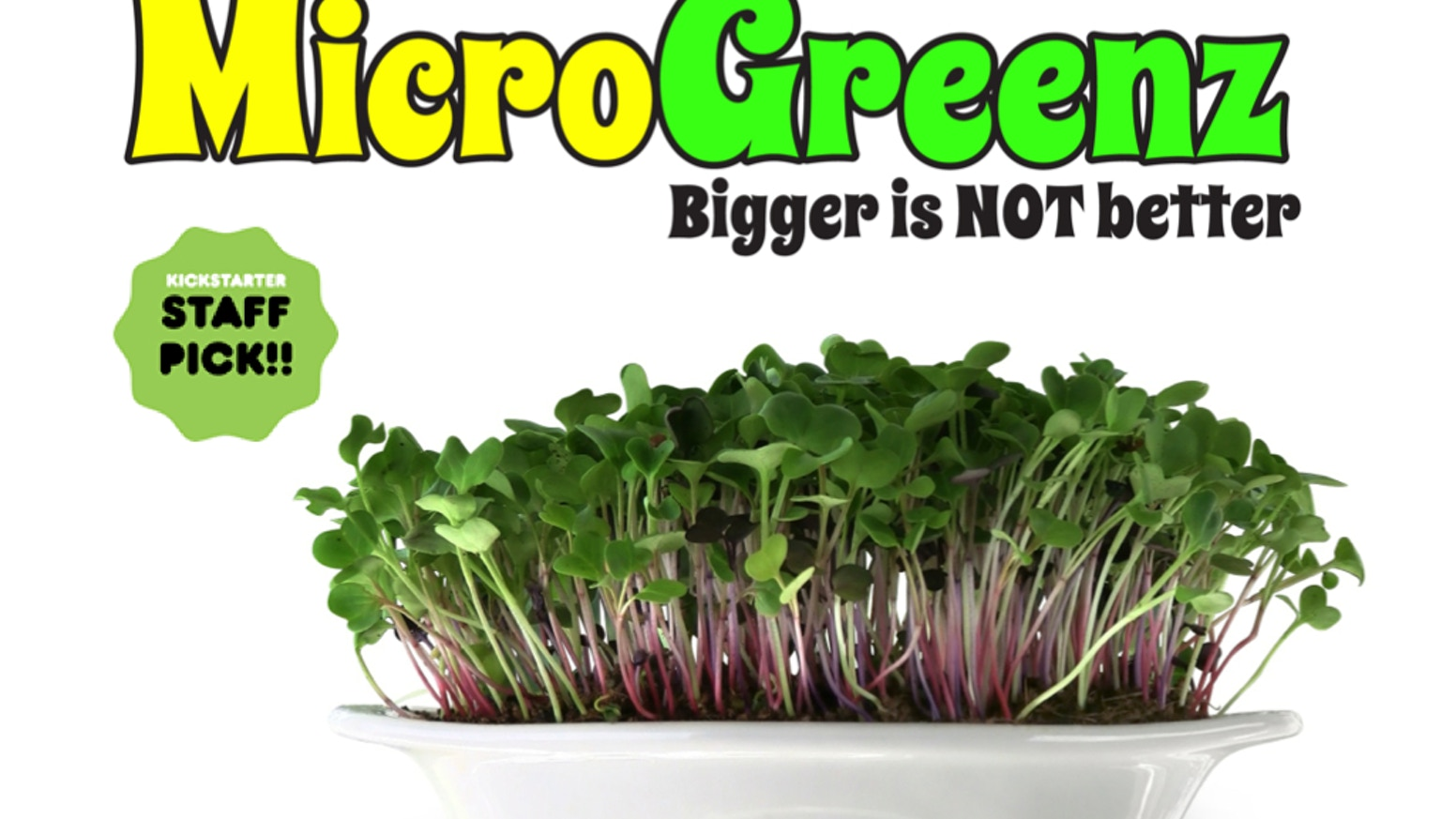 MicroGreenz - Stunning décor. A delectable microgreen garnish. Delicious, fresh, year-round mini veggies even a child could grow.