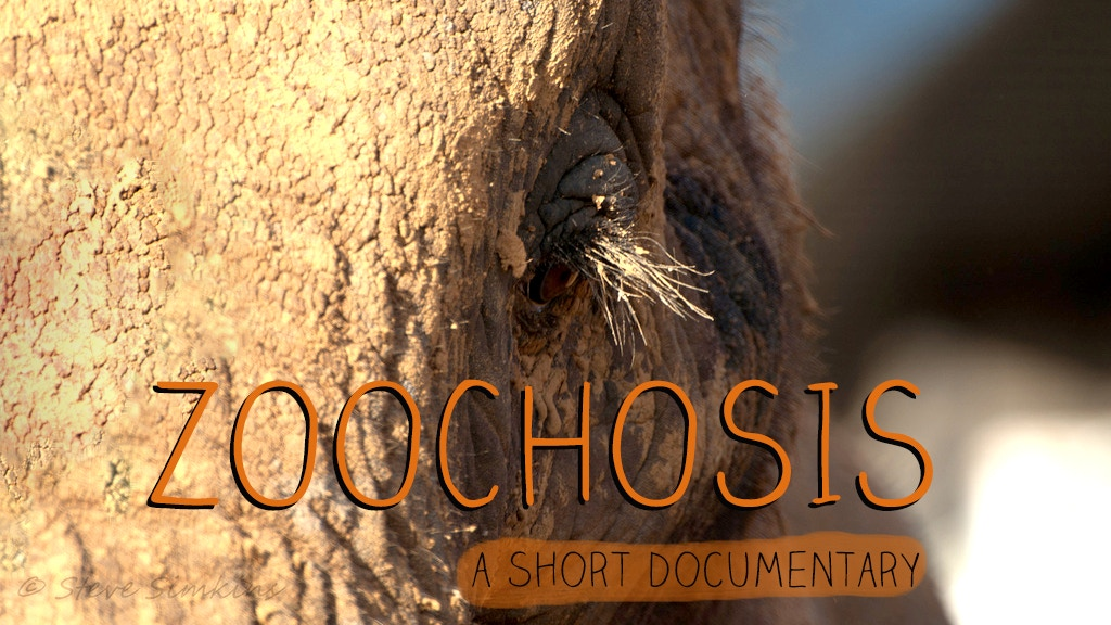 Zoochosis - A short documentary project video thumbnail