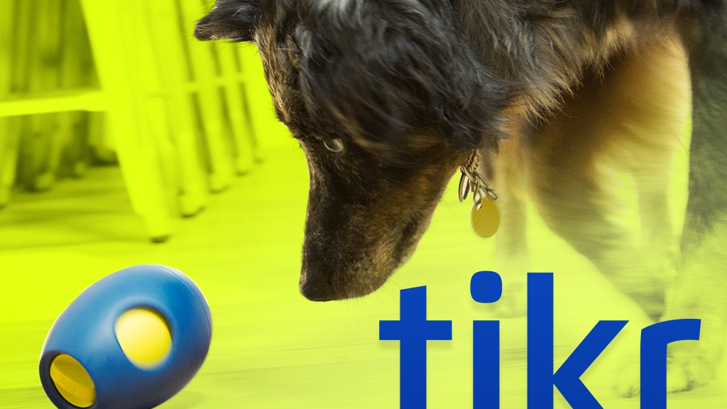 Tikr: A Treat Activity Toy for Dogs! project video thumbnail