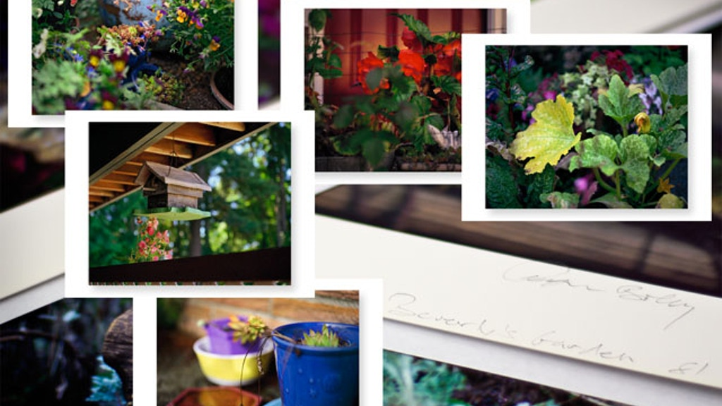 Limited Edition Prints of Beverly's Garden by Tyler Boley project video thumbnail