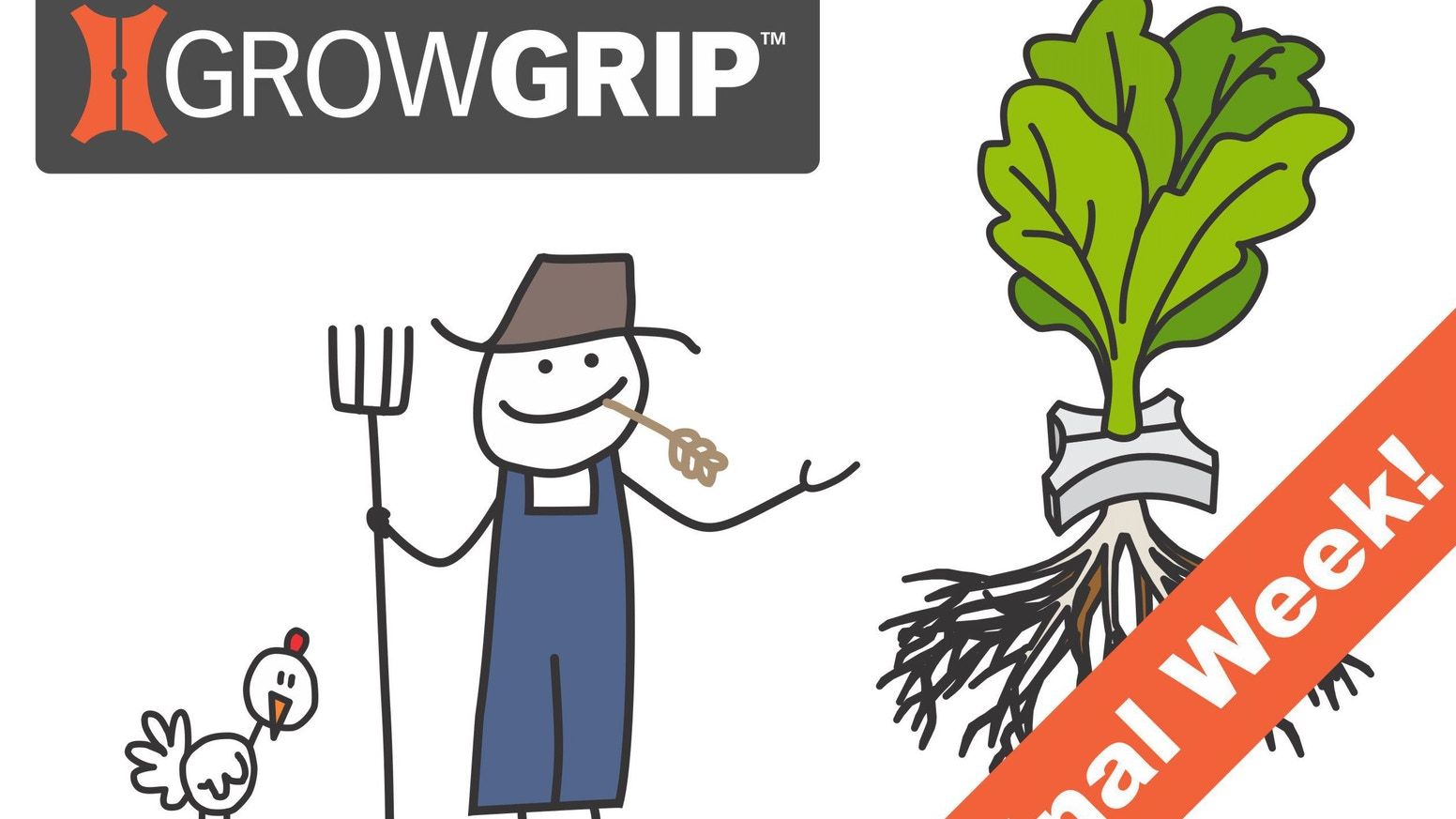 Save time and money by using GrowGrip reusable plant holders in your hydroponic or aquaponic raft beds!