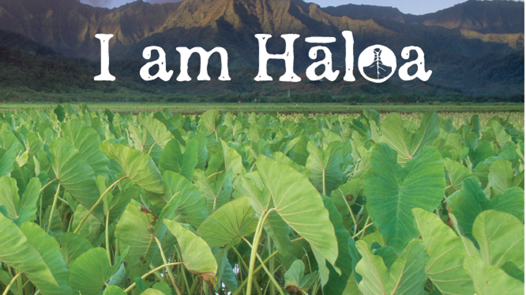 I am Haloa: Food is Culture project video thumbnail