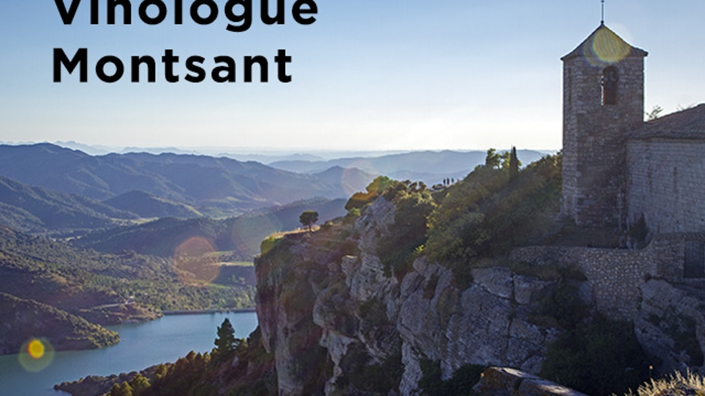 Project image for Vinologue Montsant